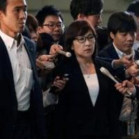北朝鮮ミサイル発射映像、弾頭部に翼らしきもの確認と稲田防衛相・・・日本防衛は大丈夫なのか?