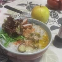 ベトナムのコメの麺、フォー