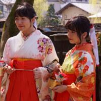 柳川雛祭りさげもんめぐり 観光柳川キャンペーンレディ水の精 2017・3・19