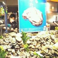 海から森を食べる「牡蠣鍋うどんすき」パーティー