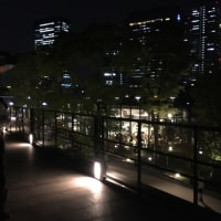 6/23 Fri Jo-Terrace