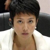『民進党新代表に蓮舫氏』-「ブーム」になったとしても「ムーブメント」にはならない