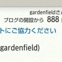 888日目!