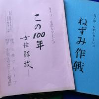 平塚雷鳥さんに会ったこと。 ーカメルポ「  女性解放 」ー