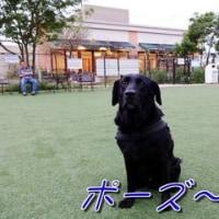 今度は・・「 横浜 」へ~♪