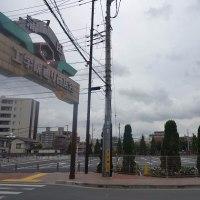 4月26日(水) 曇り