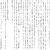 慶応大学・法学部の国語 1