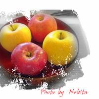 戴いてきた新品種等のリンゴ