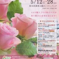 春のバラまつり・熊本農業公園 ~2017九州バラ園巡り~ その2
