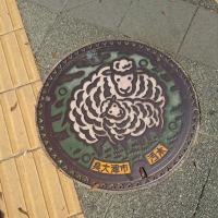 泉大津のマンホール