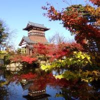 天朝山公園の紅葉 2016-11