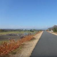 ポタリング日記-49日目-多摩川(羽村堰・高幡不動)(102.5km)