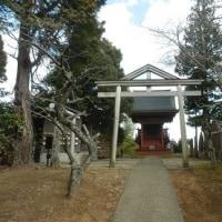 芝山仁王尊・観音教寺(2)