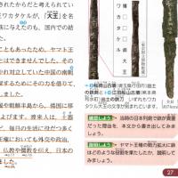 【中学歴史教科書8社を比べる】20 ~⑸ 弥生時代(3世紀まで)の「鉄」の伝来・製造<その1>~