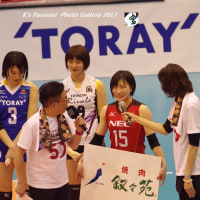 2016 /17 V.LEAGUE~☆ALL STAR GAME☆ (柳田光綺 選手) ‐ポートレートplus‐