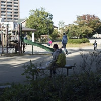 秋を感じた午後の青葉公園