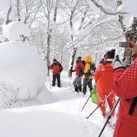 2月11日「スノーシュー体験会(ブナ森、後生掛の森)」開催しました
