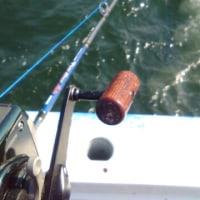 釣りばっかしてるよ。