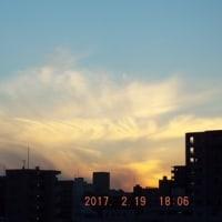 2017年02月19日(日曜日) 晴れ。 朝方、冷え込む。 日中は、陽射しが豊富。。