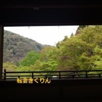 瑠璃光院 ~京都 八瀬大原・限定公開~