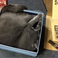 くー   お気に入りの箱