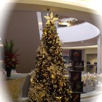 クリスマスツリー@Palais Renaissance
