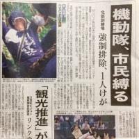 沖縄タイムス / 「機動隊、抗議の市民をロープで縛る 米軍ヘリパッド建設」