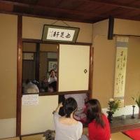 甘茶の寺 霊源院特別公開