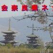 「九条の会奈良県ネットワーク」がホームページを開設