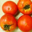 日替わりマルシェ「大分のトマト」入荷♪