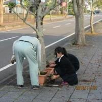 老人会との花植え