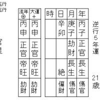 日本人最年少で 7大陸最高峰登頂