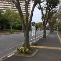 これから千葉駅に行きます。