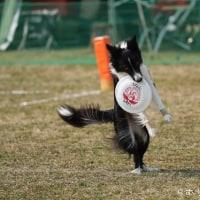 2016-2017 GAME42 (G1木曽三川公園大会)
