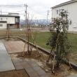 長岡のお庭紹介