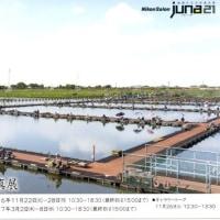 青木秀平写真展 彩の国 大阪ニコンサロン