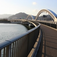 太田川大橋~太田川放水路散策