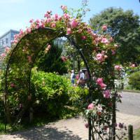 神代植物公園 その1