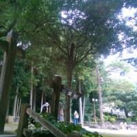 戦国武将の御宅拝見43 - 吉川広家 / 岩国城 -