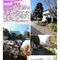 花巡り 「梅-190] 蟠龍寺