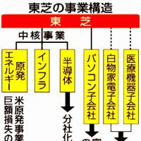 東芝を含め、原子力発電に関係している企業は「高いリスク!」、原子力は「企業価値を低める主要因!」。
