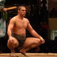 相撲競技もサハリンでは人気の競技です SKHrin info