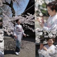 「さくら坂」歌手・小宮恵子さんの曲・山内恵介さん「流転の波止場」の2本を勝負曲・氣天流・江澤廣