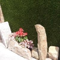 役に立たない壁面緑化