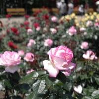 深大寺植物公園