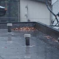 今朝の東京のお天気:雨、11月の温度統計