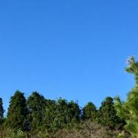 Aki-bare⁉︎ 歩く気になる季節