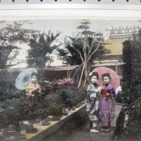 横浜植木創業者ー花卉の輸出