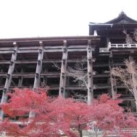~大津、京都、奈良の旅 第一日目 5~