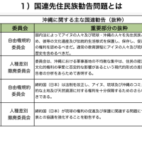 沖縄対策本部■【ジュネーブ報告】問題だらけの先住民族勧告-➁宜保安孝:「先住民族勧告を撤回させなければならない理由3点」